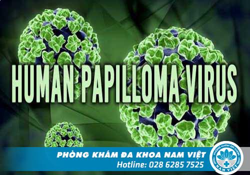 Xét nghiệm virus HPV ở đâu an toàn và chính xác?