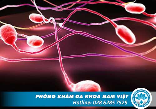 Xuất tinh ra máu - Dấu hiệu nhiều bệnh nguy hiểm